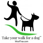 Take a walk for a dog!