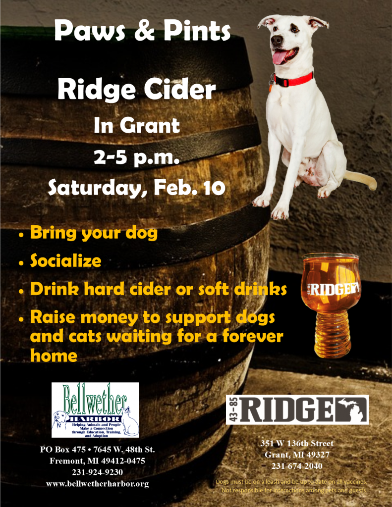 Paws & Pints @ Ridge Cider | Grant | Michigan | United States